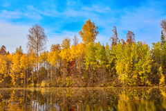 Autumn, yellow trees, water Stock Photography