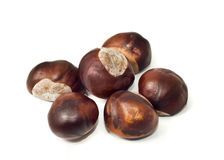 Autumn yield - Pile of chestnuts Royalty Free Stock Image