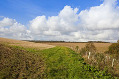 Autumn in the yorkshire wolds Stock Images