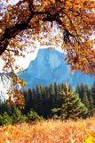 Autumn in Yosemite Stock Photos