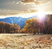 Autumn in Yosemite Stock Images