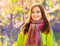 Young woman in autumn park. Young woman in the autumn park royalty free stock photo