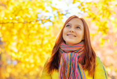 Young woman in autumn park. Young woman in the autumn park royalty free stock photos