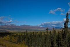 Autumn in the Yukon. Canada stock images