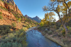 Autumn in Zion National Park Royalty Free Stock Photo