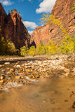 Autumn in Zion National park Royalty Free Stock Images