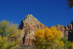 Autumn in Zion National Park, Utah Stock Images