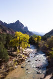 Autumn in Zion National Park Royalty Free Stock Image