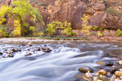 Autumn in Zion NP Stock Photo