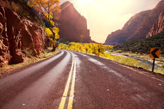 Autumn in Zion Royalty Free Stock Image