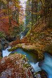 Autumna landscape with canyon and river. Landscape with a beautiful canyon in the fall Royalty Free Stock Photos
