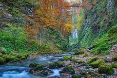 Autumna landscape with canyon and river. Landscape with a beautiful canyon in the fall Royalty Free Stock Photo