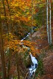 Autumna landscape with canyon and river Royalty Free Stock Images