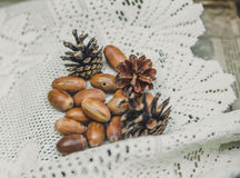 Autumnal acorns and cones on the lace white tablecloth.Vintage toned background Stock Image