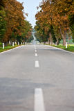 Autumnal alley road Stock Image