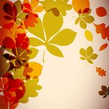 Autumnal background. Bright colorful leaves Stock Image