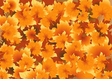 Autumnal background. Vector illustration, AI file included Stock Photography