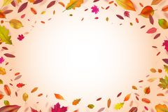 Autumnal background. Autumn falling yellow leaves. Nature season vector backdrop. Autumn fall nature, banner illustration vector illustration