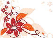 Autumnal background with beautiful flowers Stock Photography