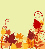 Autumnal background with colorful Stock Images