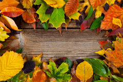 Autumnal background with copy space Royalty Free Stock Images
