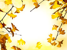 Autumnal background Stock Images