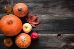 Autumnal background with pumpkins, apples, fallen leaves royalty free stock images
