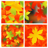 Autumnal background set Royalty Free Stock Photos