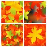 Autumnal background set Royalty Free Stock Photos
