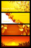 Autumnal background set Stock Photo