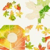 Autumnal Background Set Royalty Free Stock Image