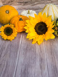 Autumnal background of wood with pumpkins and blooms at the top Stock Image