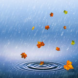 Autumnal backrounds. With fallen foliage and rain drops stock illustration