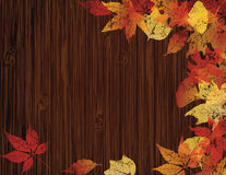 Autumnal Banner Royalty Free Stock Photos