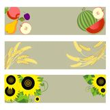 Autumnal banners with watermelon, wheat and sunflowers Stock Photo