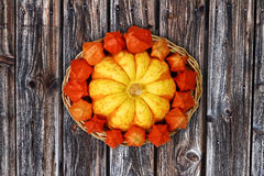 Autumnal Basket with Decorative Gourd and Physalis on Wooden Background. Autumnal basket with decorative gourd and dried sepals of Physalis alkekengi on grunge royalty free stock photos