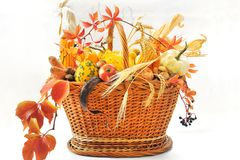 Autumnal basket over white Royalty Free Stock Photos