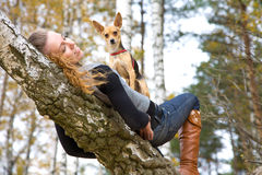 autumnal beauty park Στοκ Εικόνες