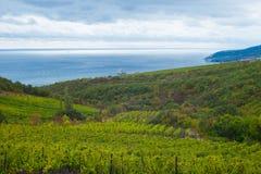 Autumnal Black Sea landscape on the Crimean shore. Royalty Free Stock Image