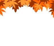 Autumnal border Stock Image
