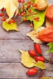 Autumnal border. Autumnal border with rowan and wilde rose fruits on wooden table, still life Stock Images