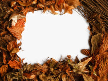 Autumnal border. Autumn seasonal border with golden orange leaves a great rustic fall frame Royalty Free Stock Image