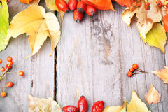 Autumnal border. Autumnal border on wooden table, still life Royalty Free Stock Image