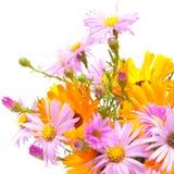 Autumnal bouquet Stock Photo