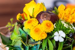 Autumnal bouquet with chestnuts stock image