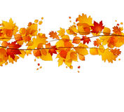 Autumnal Royalty Free Stock Photography