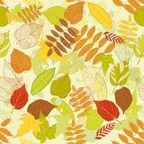 Autumnal bright leaf seamless vector Royalty Free Stock Image