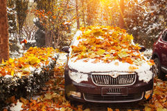 Car covered by golden leaves. In fall stock photos