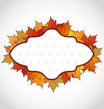 Autumnal card with colorful maple leaves Stock Image