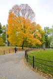Autumnal Central Park Royalty Free Stock Images